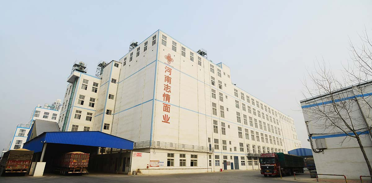چین 1400TPD گندم کارخانه فرز