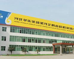در سال 2004 تمامی سهام شرکت ماشین سازی غلات لو هه چی ا ستان هه نان را خریداری کرده است